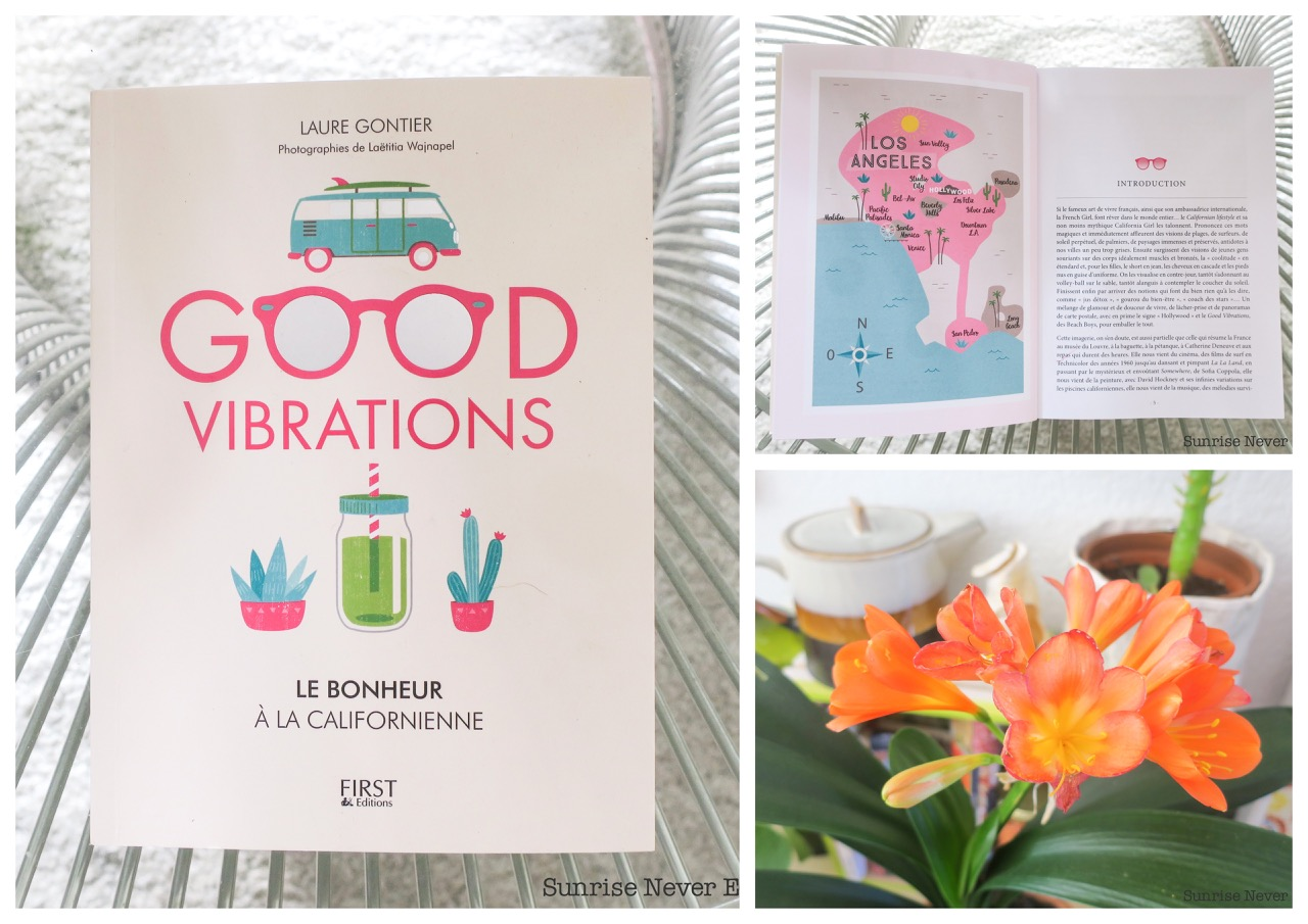 good vibrations,californie,californian life,lifestyle,livre,book,laure gaunter,first editions