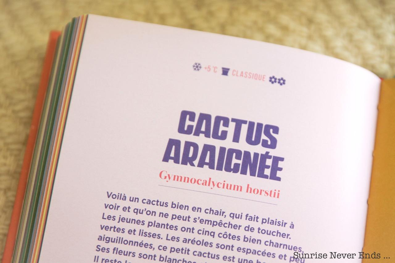 cactus,livre,plantes vertes,jardinage,conseils,édition la plage,yann cochard,illustrations,lucia calfapietra