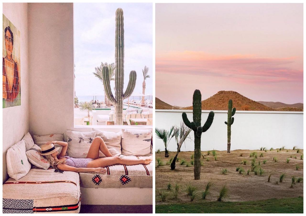san cristobal,mexico,hotel,déco,todos santo,voyages,travel,let's escape,billabong women,billabong women europe