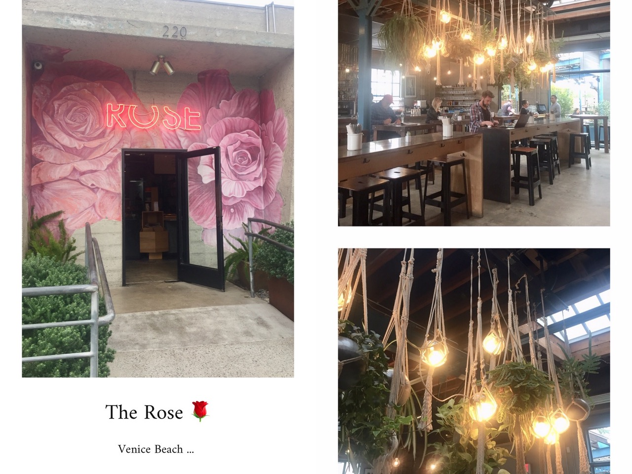 the rose,café,restaurant,coffee shop,venice beach,californie,travel,voyage,travel guide,aliceetfantomette,aliceetfantometteencalifornie,clareV,clare vivier,shopping,sacs,fashion,accessories