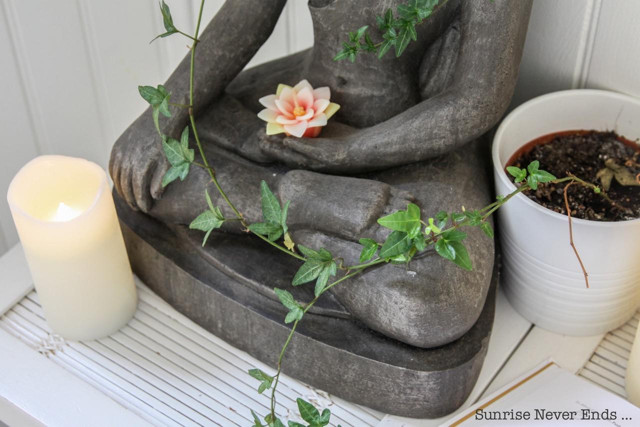 mudra,yoga des doigts,flammarion,juliette dumas,locana sansregret,illustrations,clementine du pontavice,wellness,bien-être