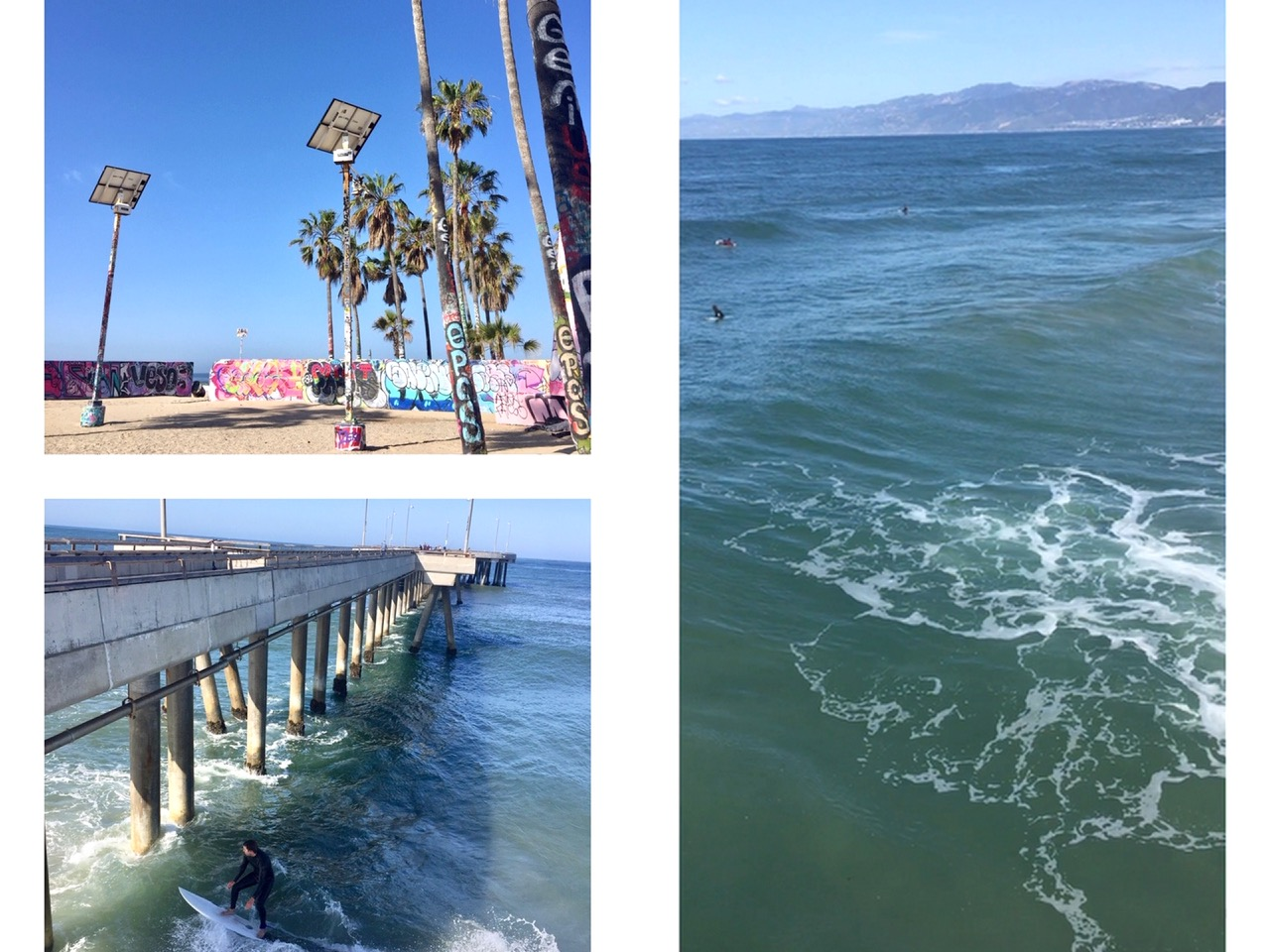 venice beach,mornign walk,cartes postales,californie,los angeles,aliceetfantomettre,aliceetfantometteencalifornie,travel,travel guide,voyage