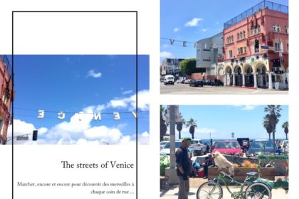 venice,venice beach,los angeles,californie,aliceetfantomette,aliceetfantometteencalifornie,travel,voyages,travel guide