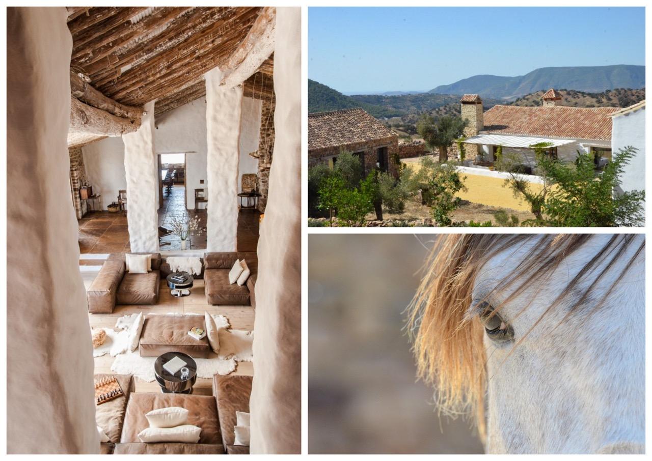 maison d'hotes,voyage,travel,hotel,la doneira,andalousie,espagne,ferme equestre,