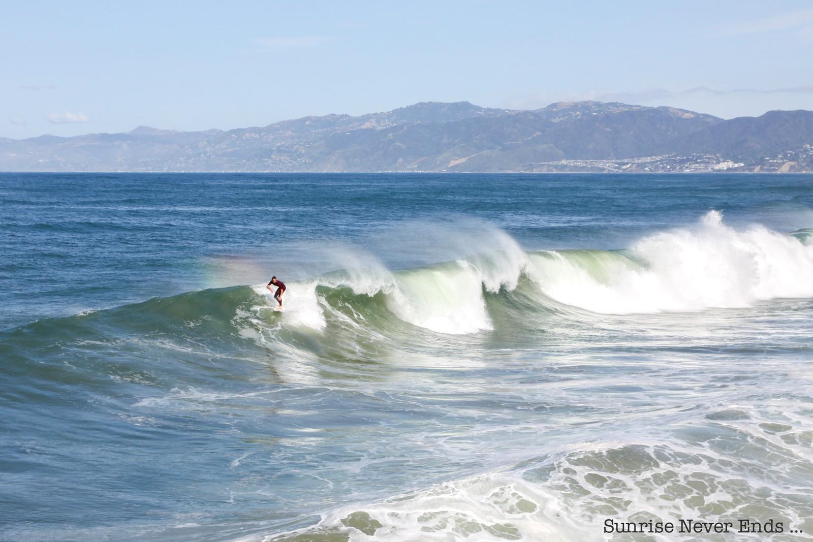 venice beach,los angeles,californie,travel,travel guide,city guide,usa