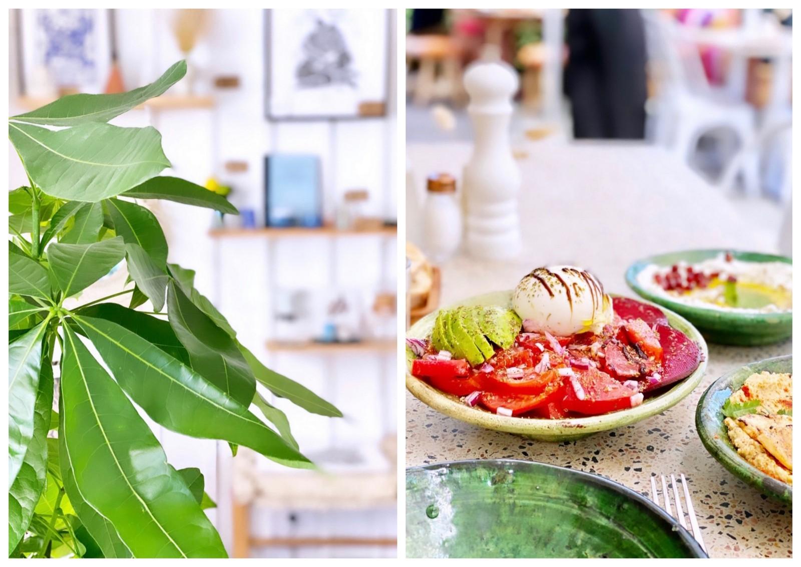 bronzette,lacanau,restaurant,coffee shop,beach coconut,concept-store,shopping,rainbow café,plage,beach,travel,travel guide,city guide,où déjeuner à lacanau
